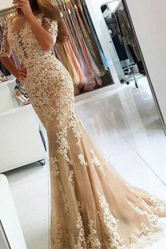 Sexy Illusion Neck Mermaid Lace Dress with Sleeves