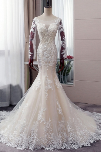 Sexy Long Sleeves Mermaid Lace Wedding Dress